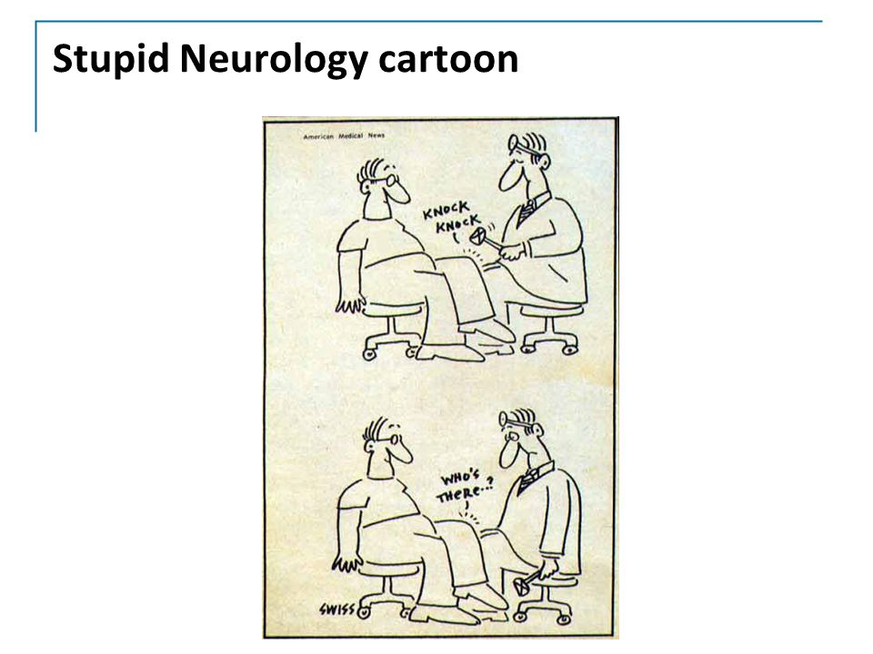 Stupid Neurology cartoon