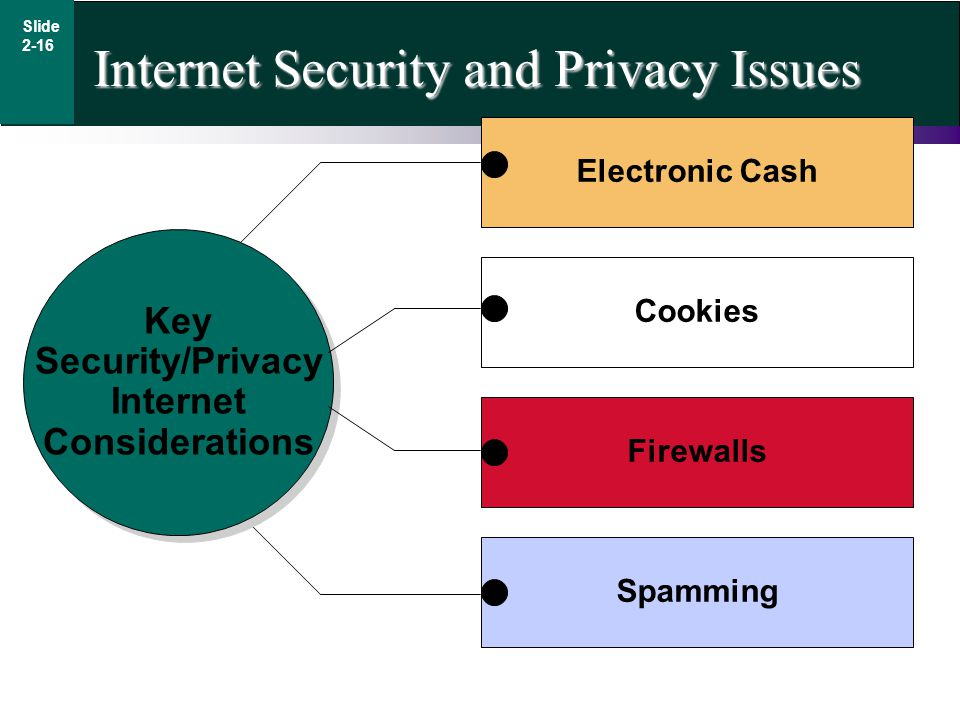 Internet Security and Privacy Issues