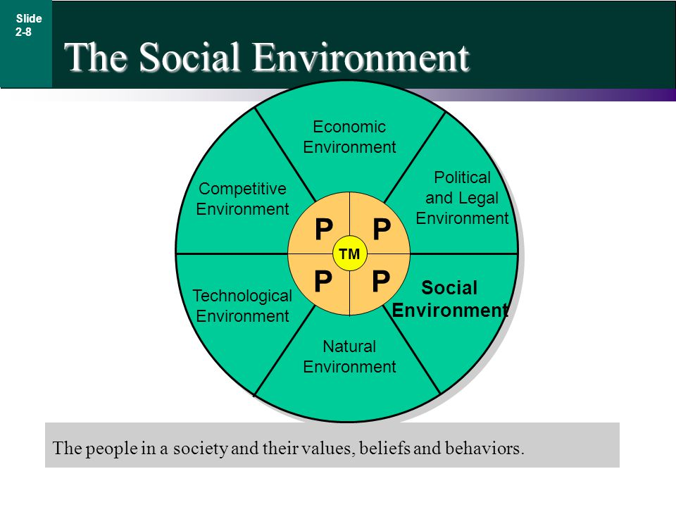 The Social Environment