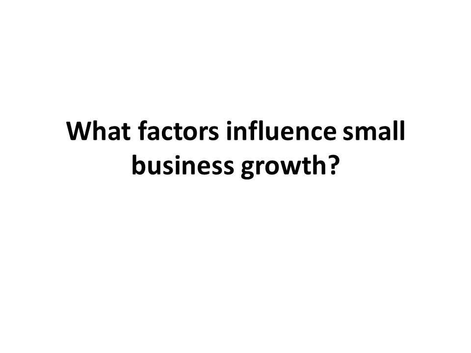 What factors influence small business growth