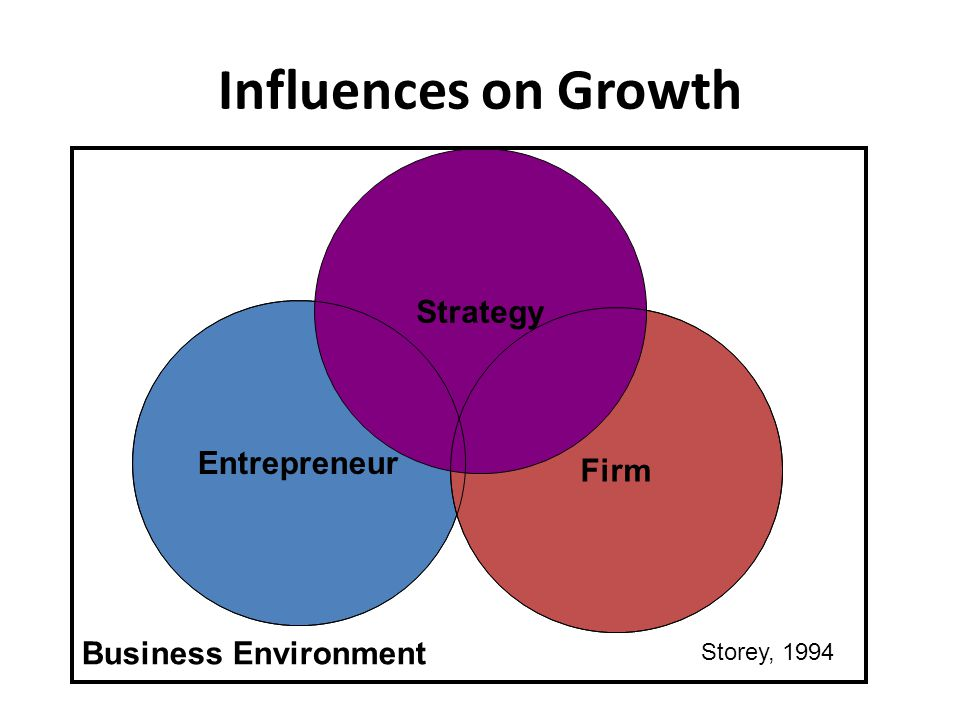 Influences on Growth Strategy Entrepreneur Business Environment Firm