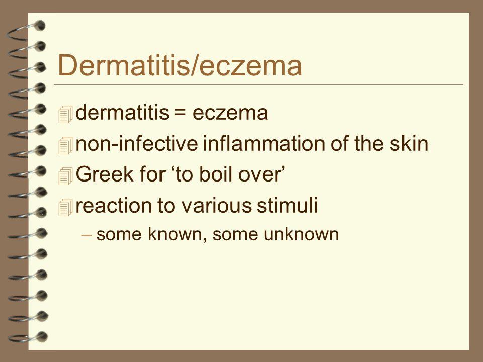 Dermatitis/eczema dermatitis = eczema