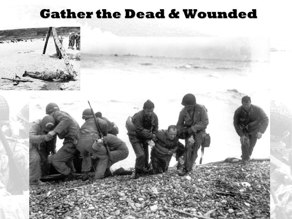 Gather the Dead & Wounded