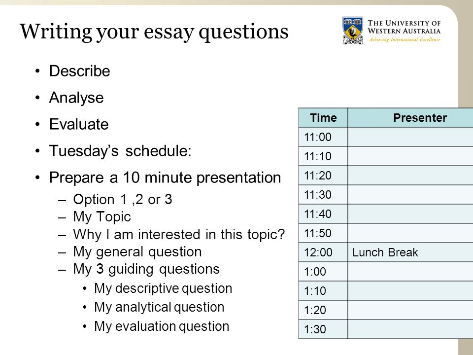 Writing your essay questions