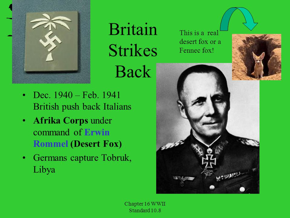 Britain Strikes Back Dec. 1940 – Feb. 1941 British push back Italians