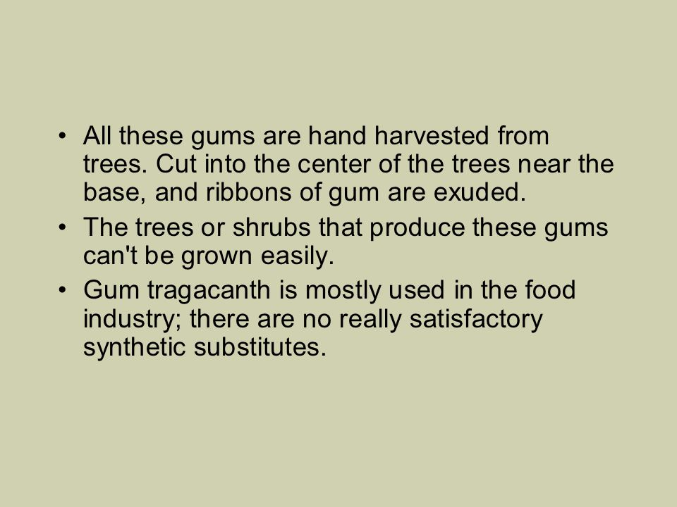 All these gums are hand harvested from trees