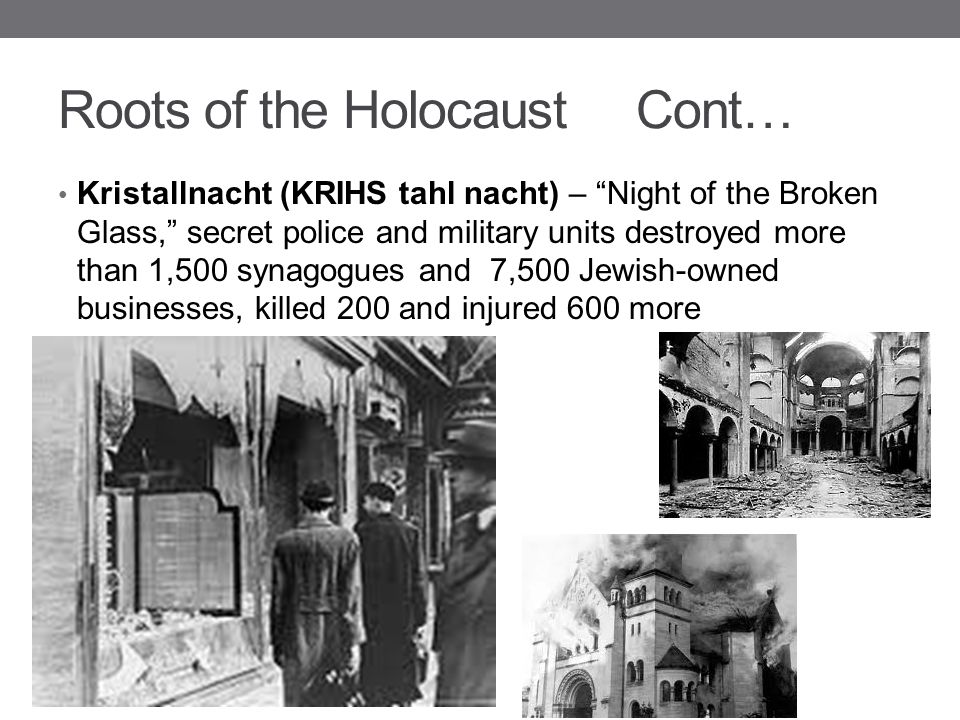 Roots of the Holocaust Cont…
