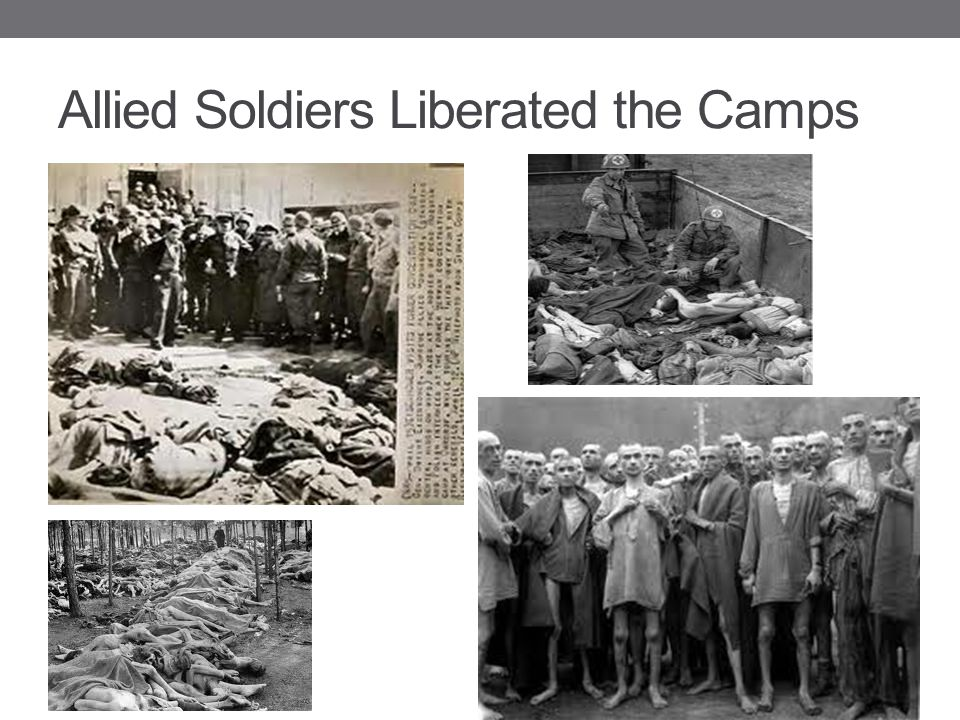 Allied Soldiers Liberated the Camps