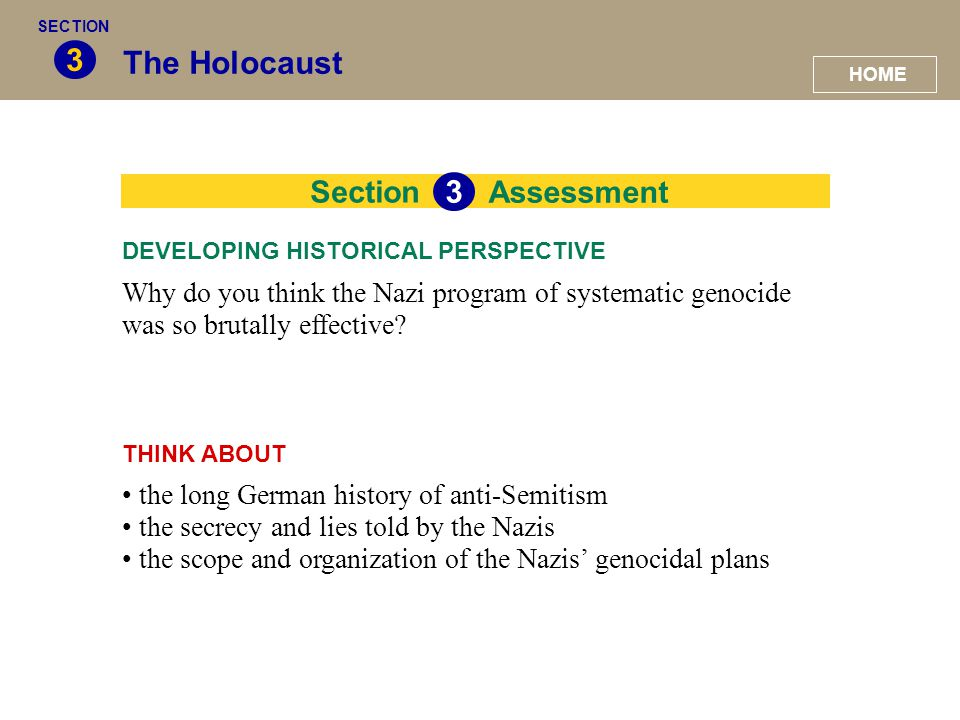 3 The Holocaust 3 Section Assessment