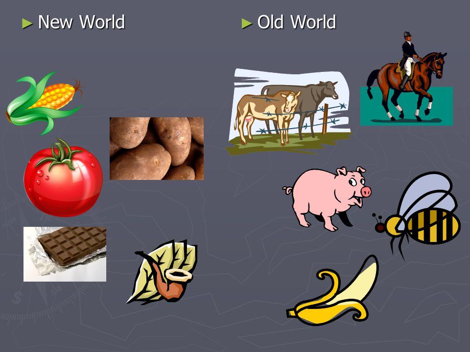 New World Old World