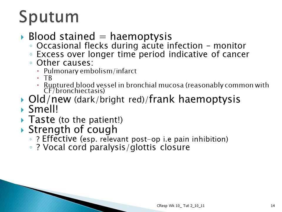 Sputum Blood stained = haemoptysis