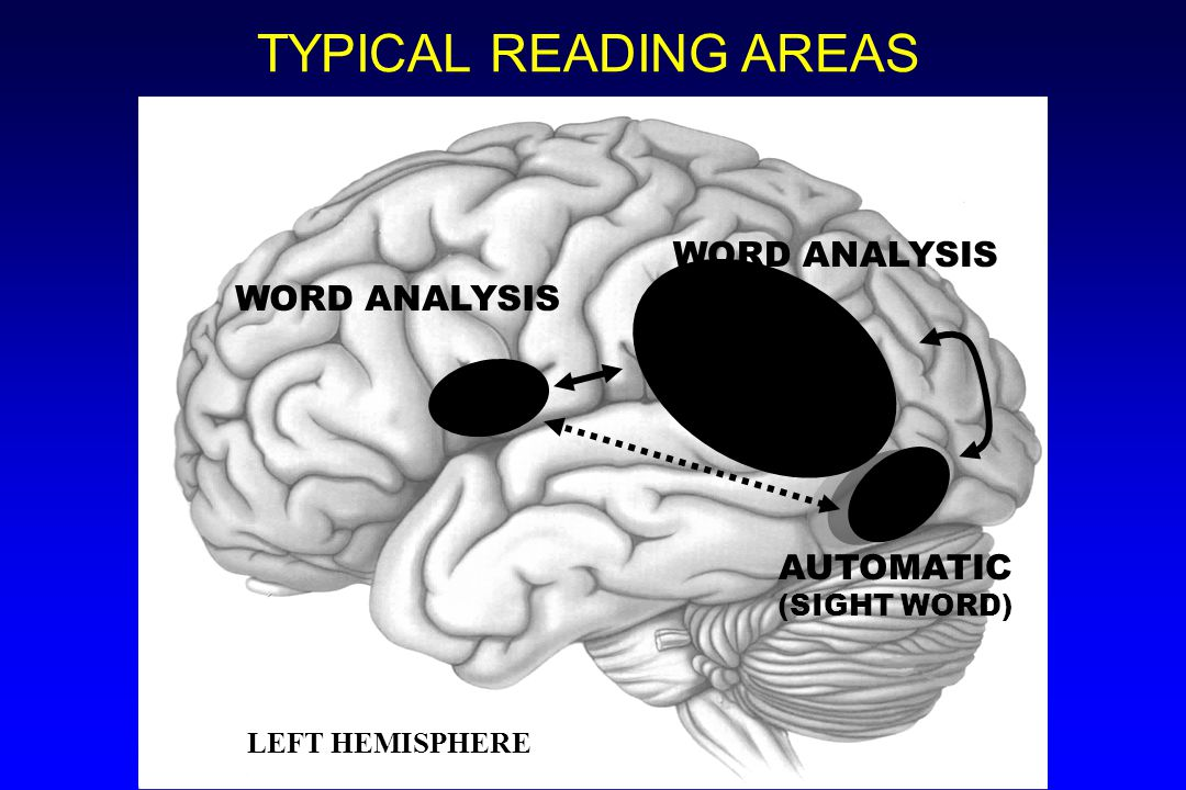 TYPICAL READING AREAS WORD ANALYSIS AUTOMATIC (SIGHT WORD)