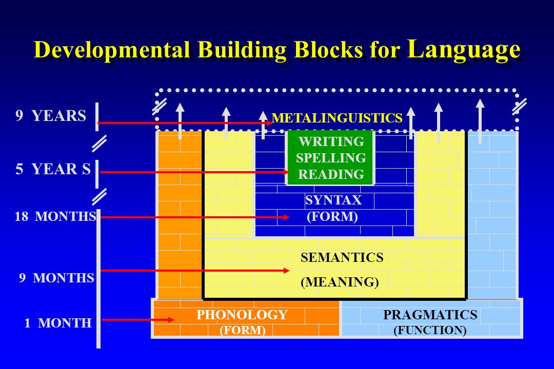 Developmental Building Blocks for Language