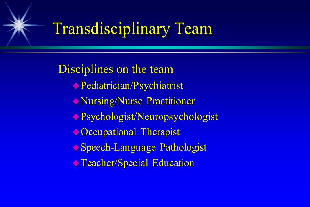 Transdisciplinary Team