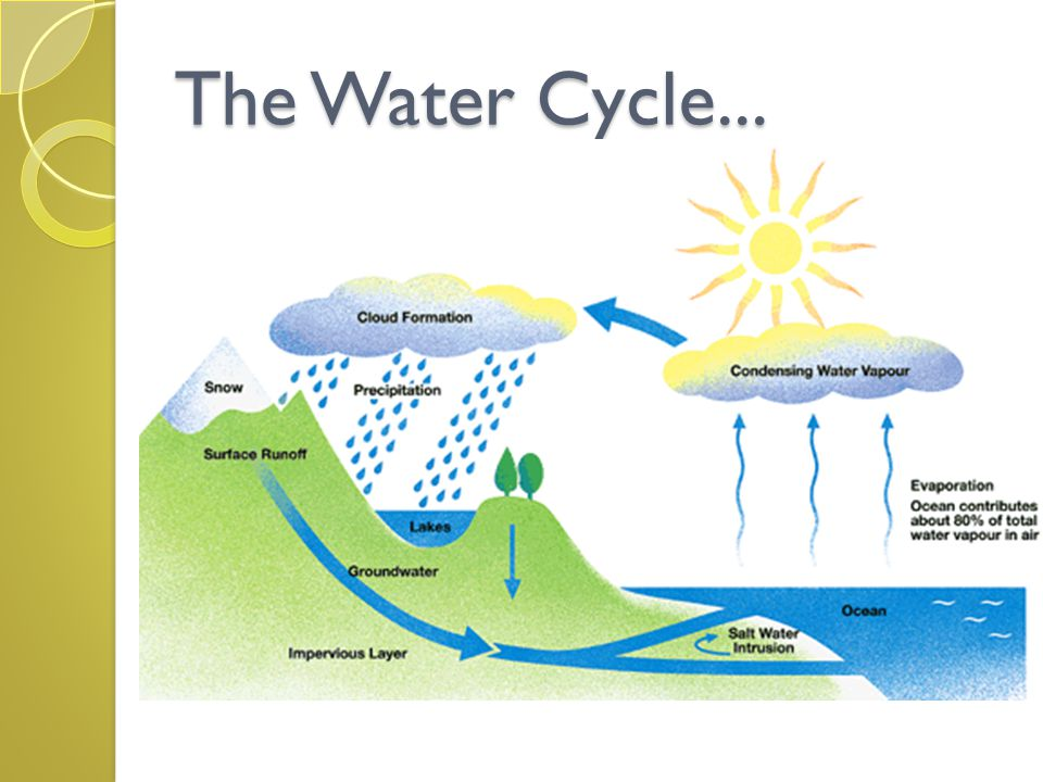 The Water Cycle...