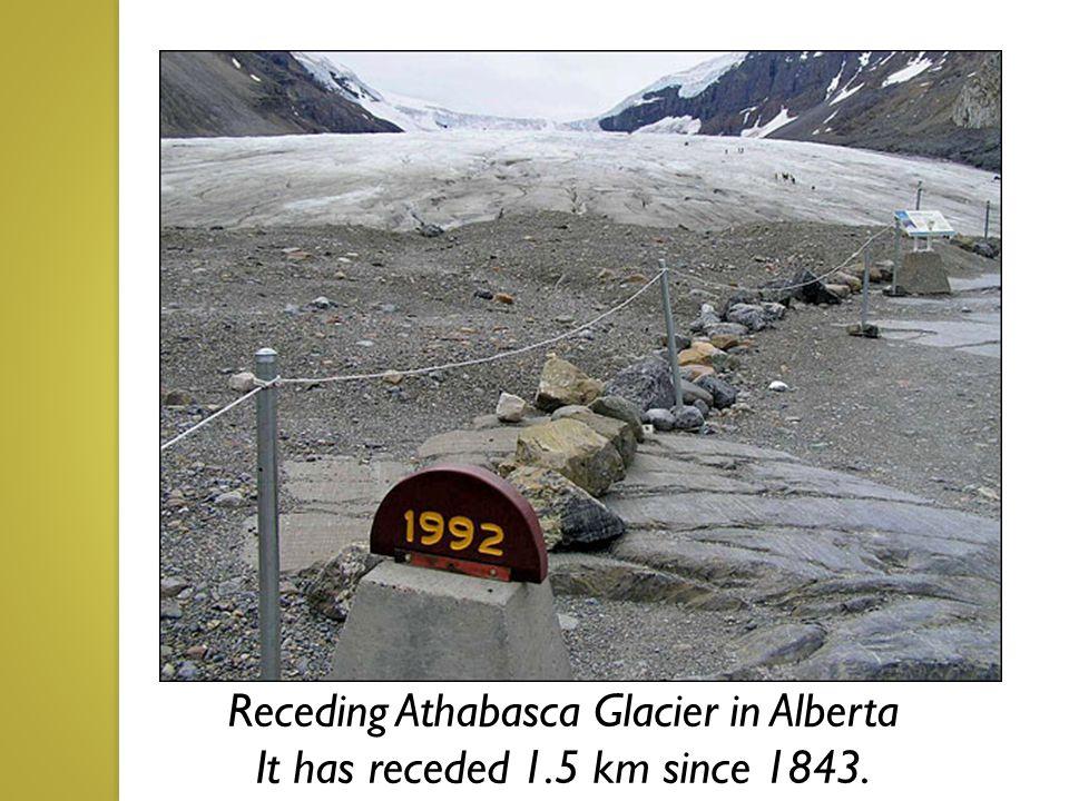 Receding Athabasca Glacier in Alberta