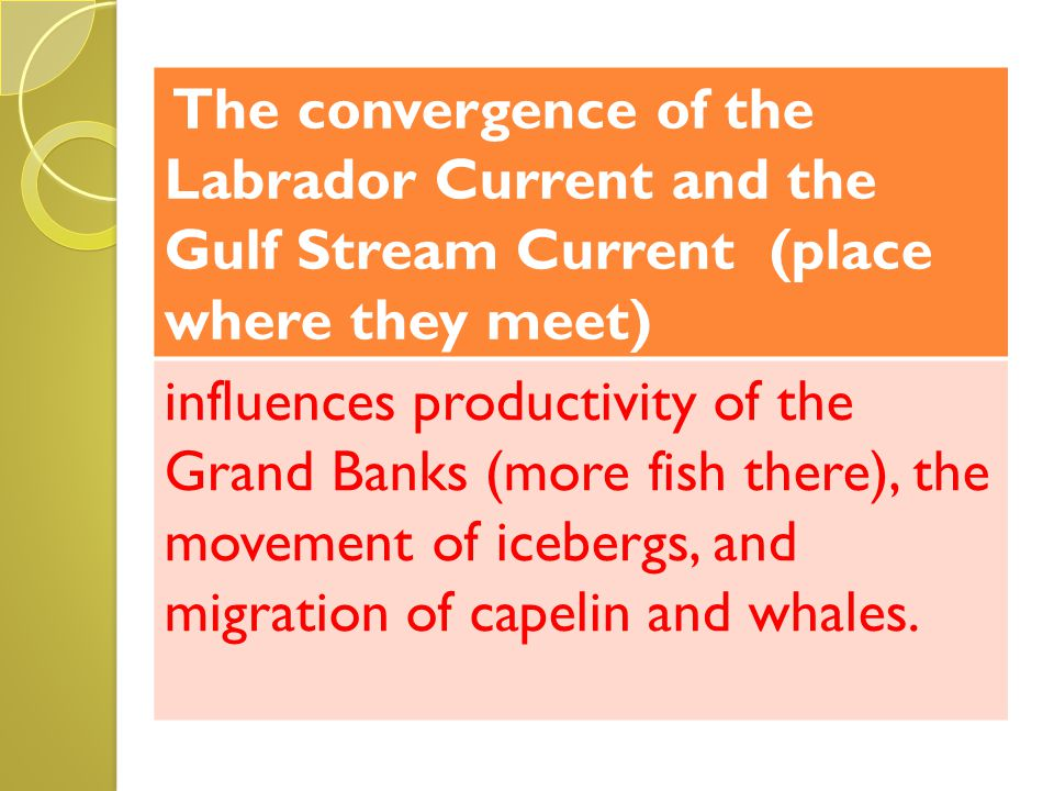The convergence of the Labrador Current and the Gulf Stream Current (place where they meet)