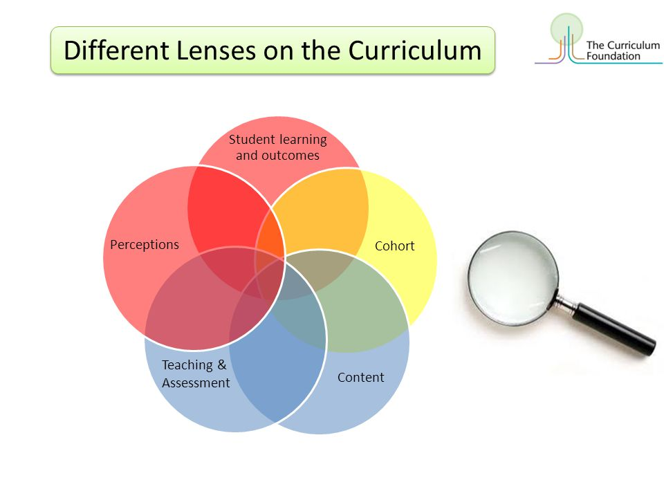 Different Lenses on the Curriculum