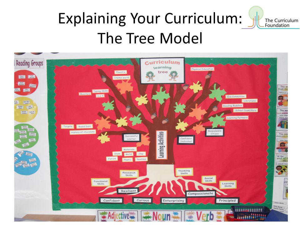 Explaining Your Curriculum: The Tree Model