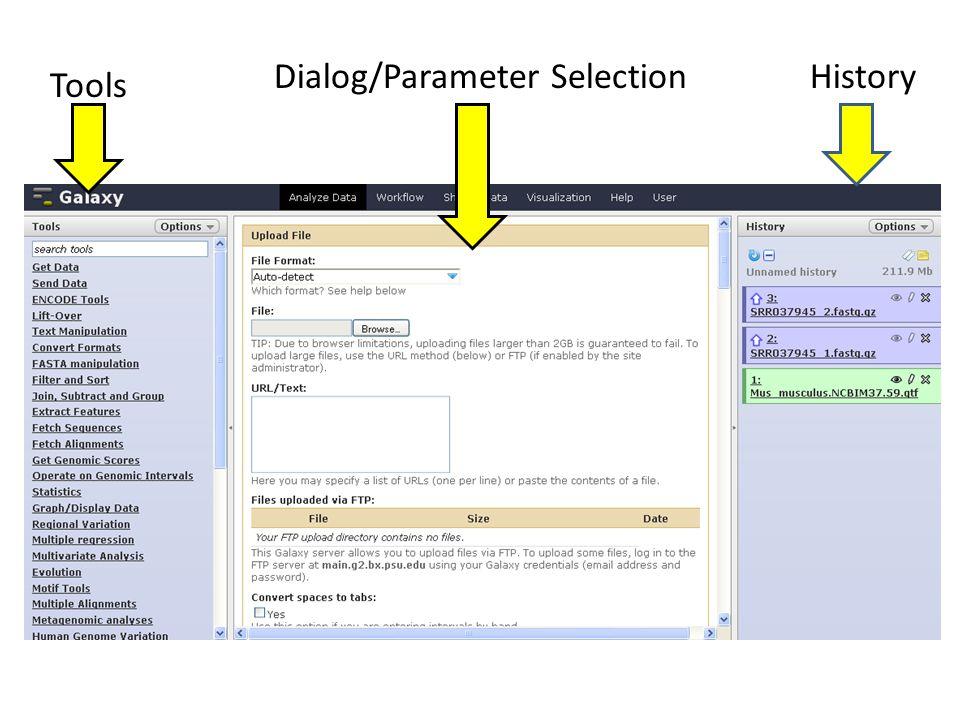 Dialog/Parameter Selection