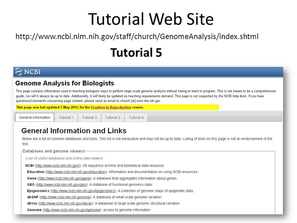 Tutorial Web Site Tutorial 5