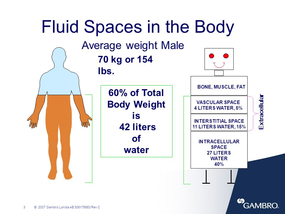 Fluid Spaces in the Body
