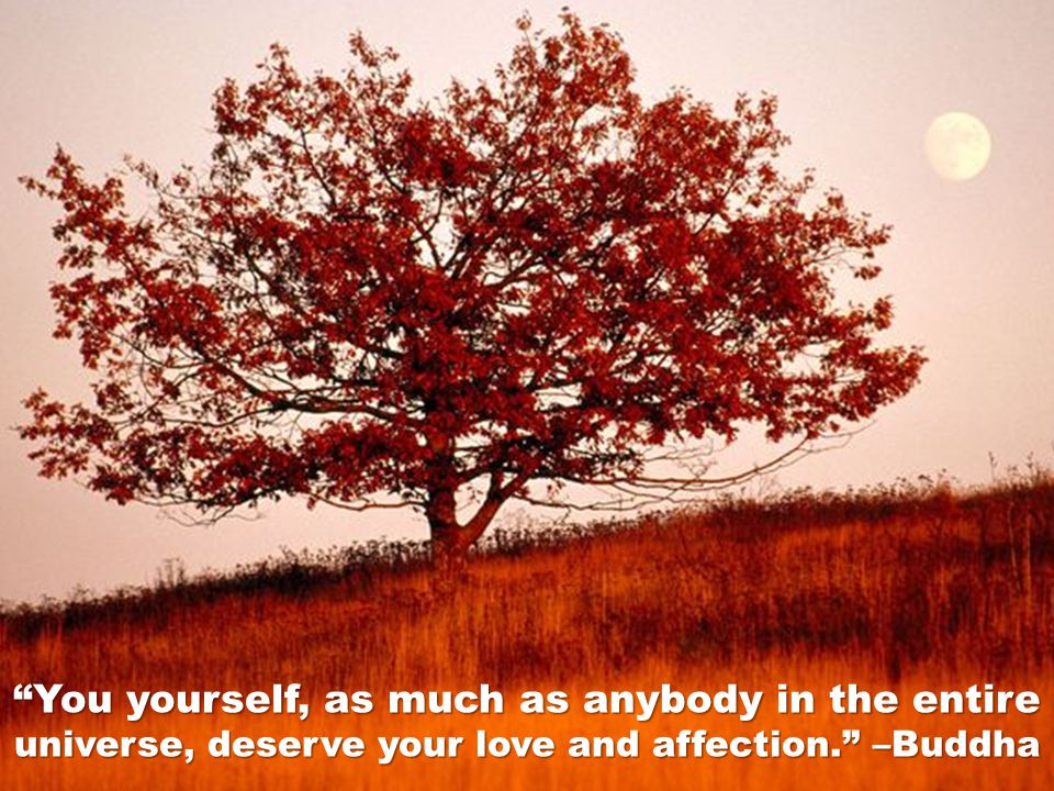 You yourself, as much as anybody in the entire