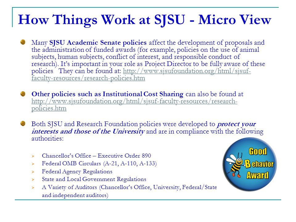 How Things Work at SJSU - Micro View