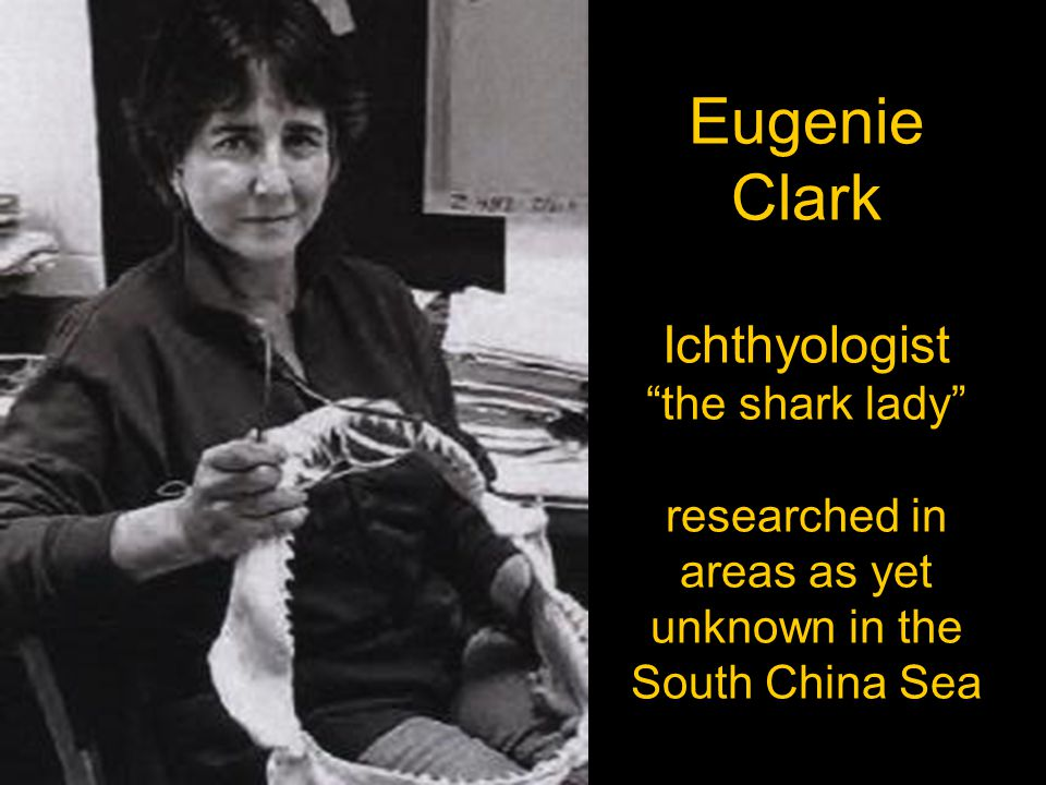 Eugenie Clark Ichthyologist the shark lady researched in areas as yet unknown in the South China Sea