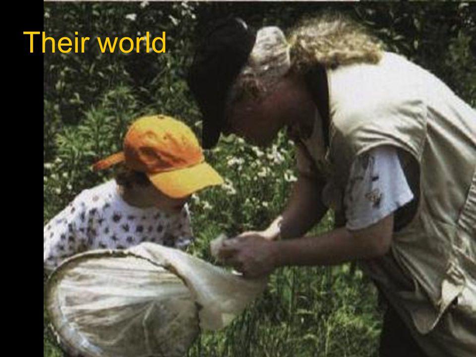 Their world