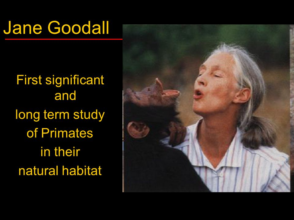 Jane Goodall First significant and long term study of Primates