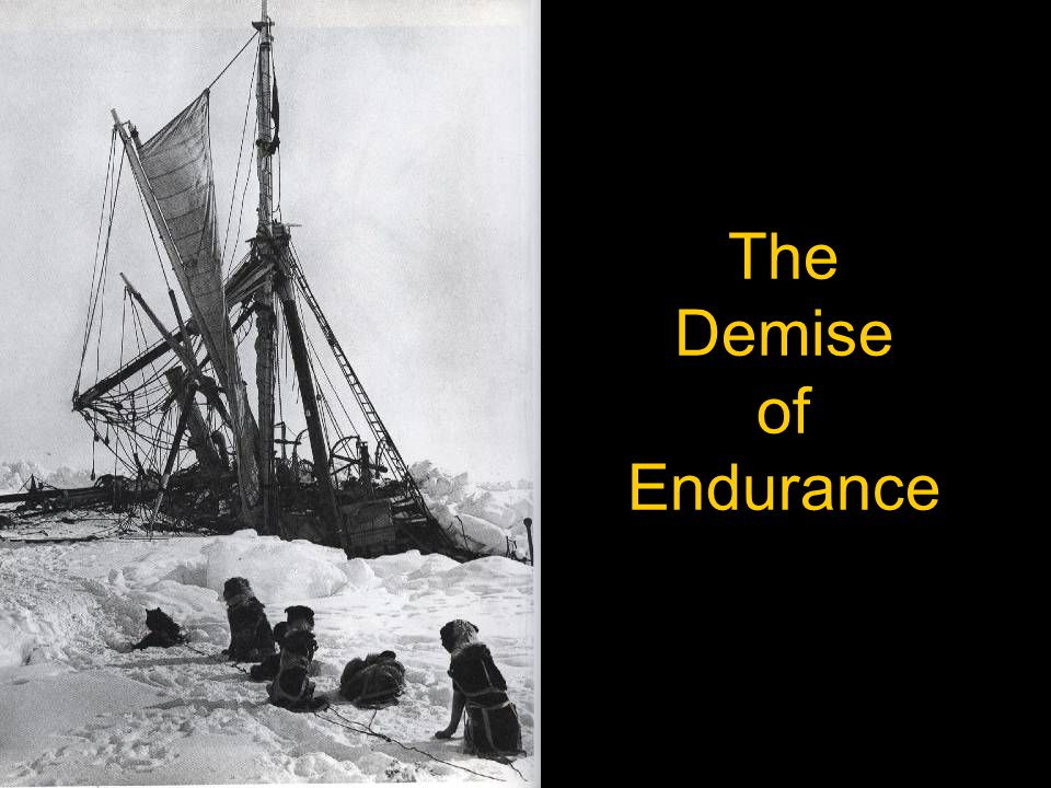 The Demise of Endurance