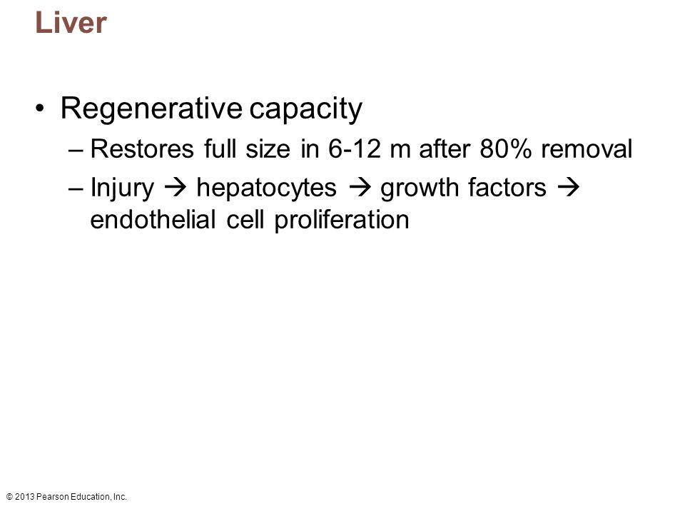 Regenerative capacity