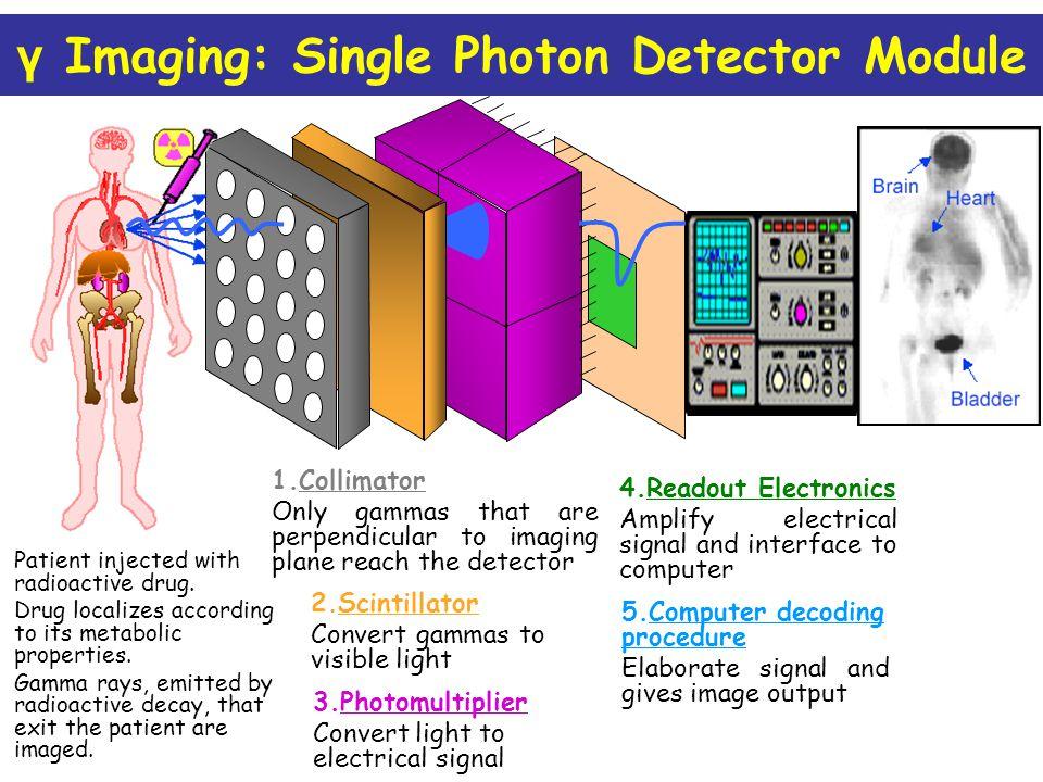 γ Imaging: Single Photon Detector Module