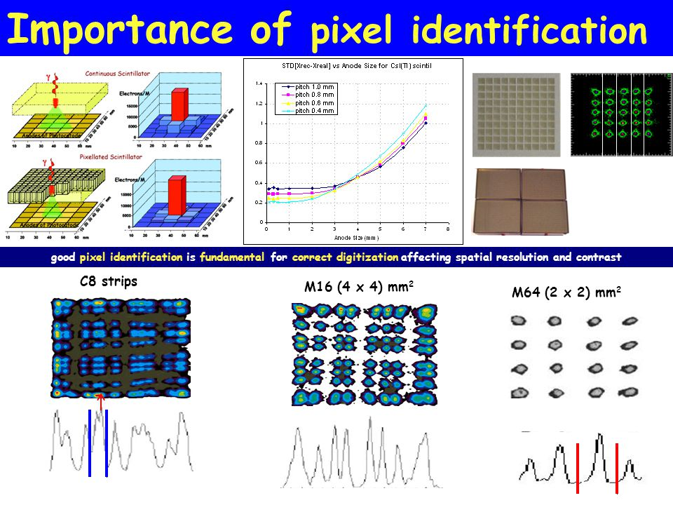 Importance of pixel identification