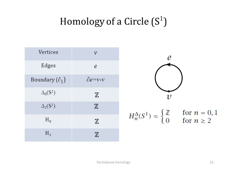 Homology of a Circle (S1)
