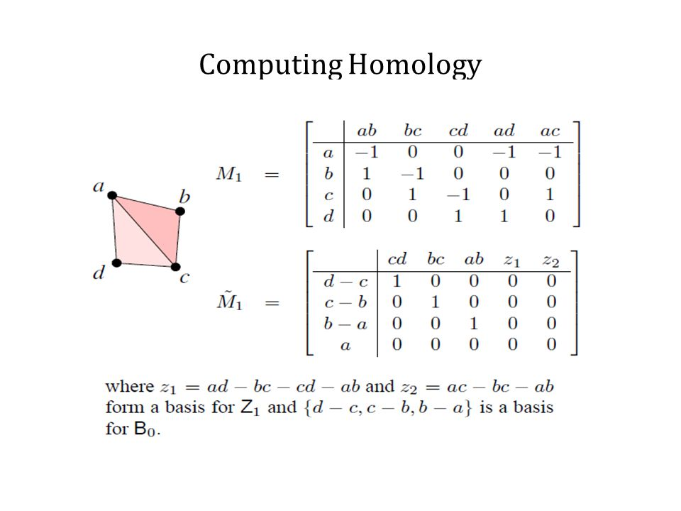 Computing Homology Cycles which generate the n dimensional holes are called homology generators. Agoston Algorithm(1976)