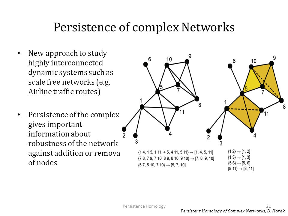 Persistence of complex Networks