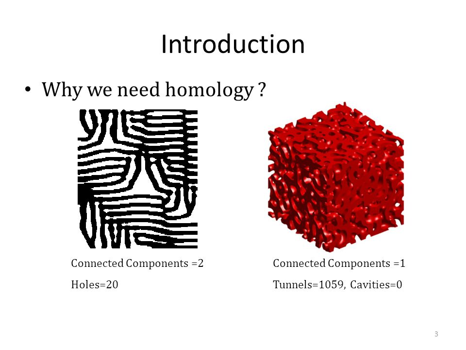Introduction Why we need homology Connected Components =2 Holes=20