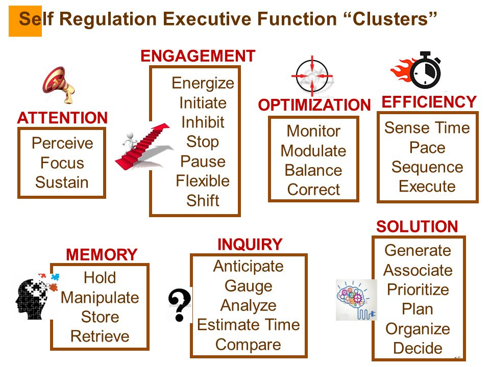Self Regulation Executive Function Clusters