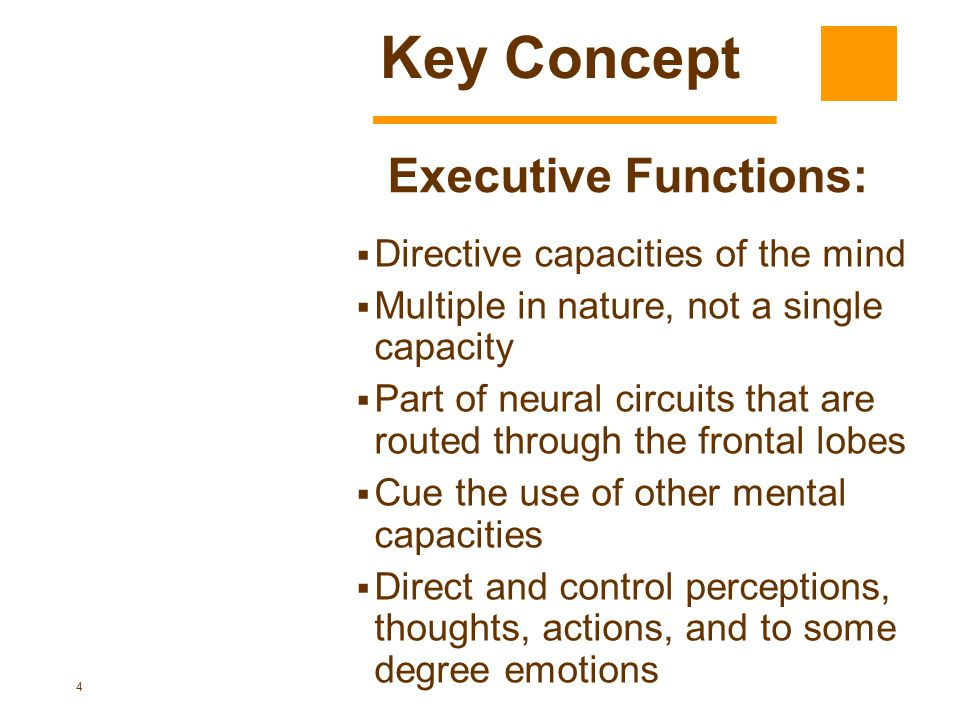 Key Concept Executive Functions: Directive capacities of the mind