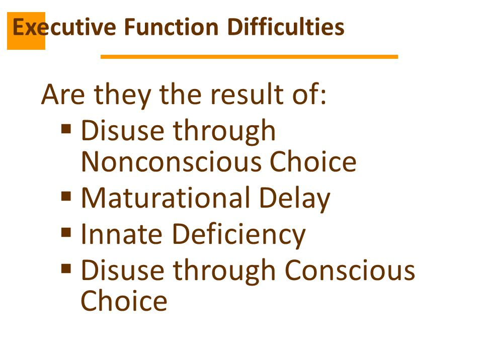 Executive Function Difficulties