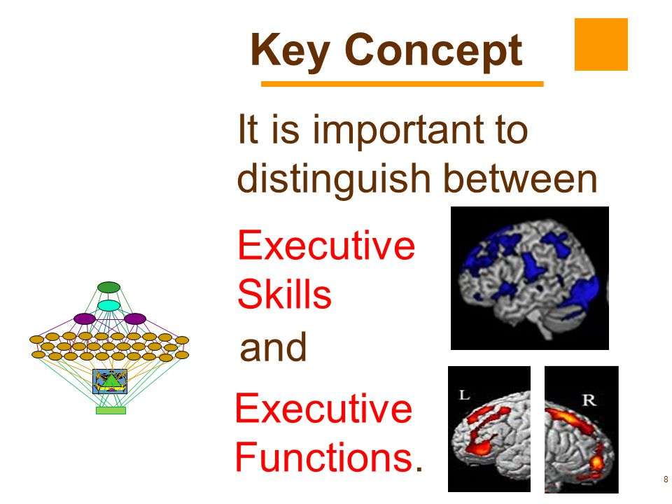 Key Concept It is important to distinguish between Executive Skills