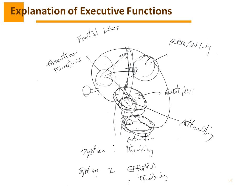 Explanation of Executive Functions