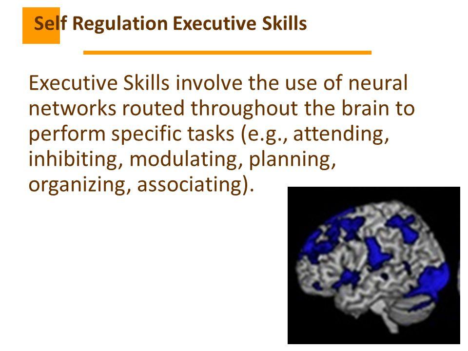 Self Regulation Executive Skills