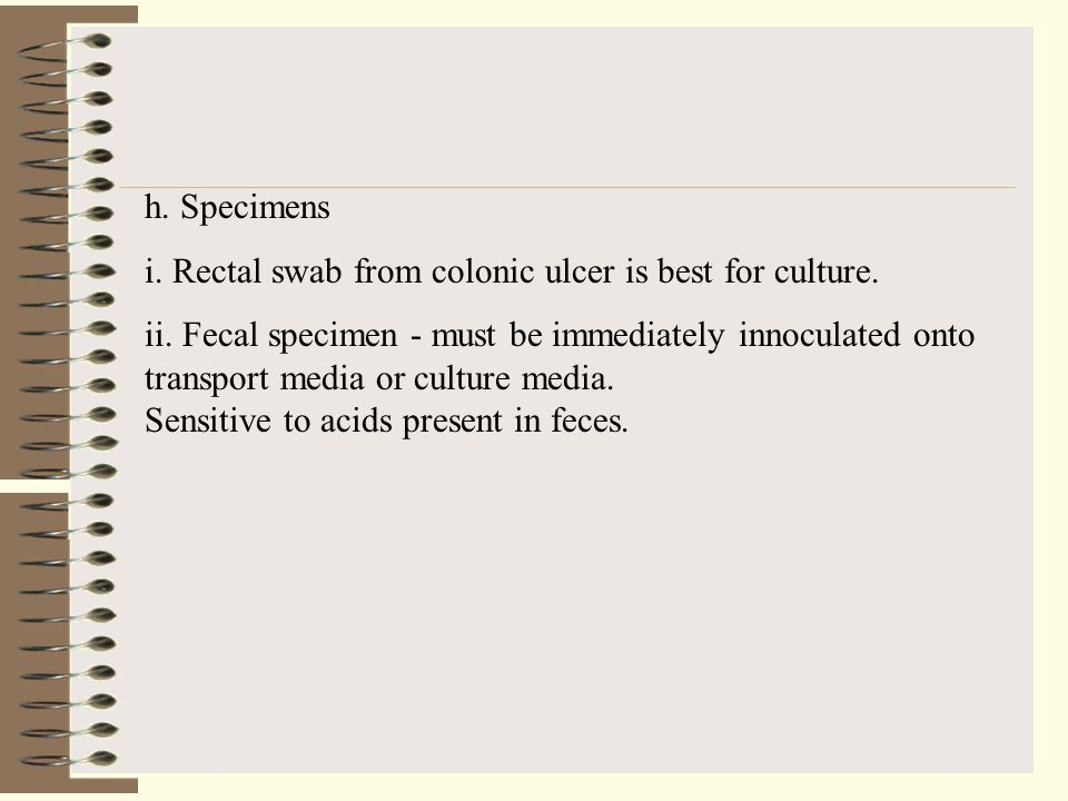 h. Specimens i. Rectal swab from colonic ulcer is best for culture.