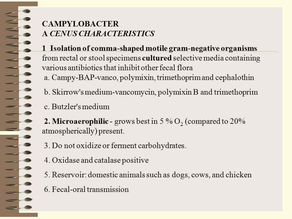 CAMPYLOBACTER A CENUS CHARACTERISTICS