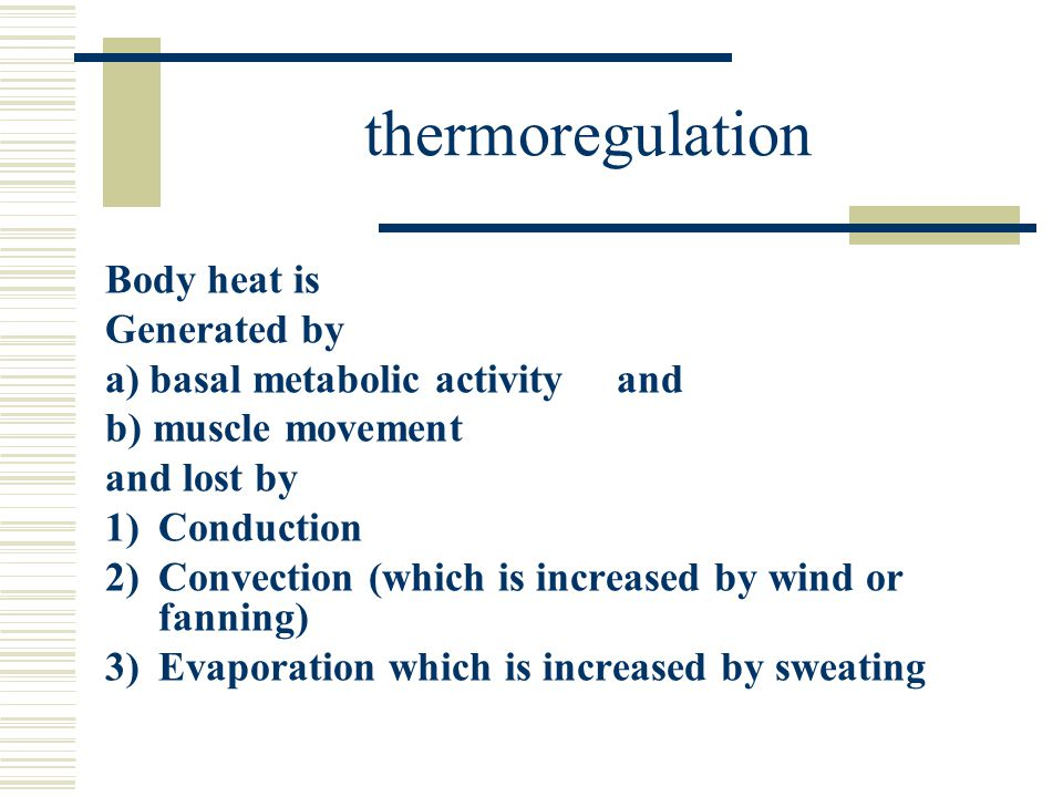thermoregulation Body heat is Generated by