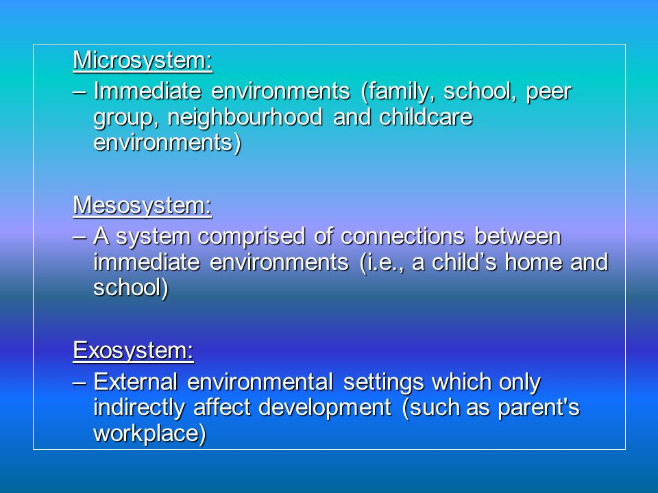 Microsystem: Immediate environments (family, school, peer group, neighbourhood and childcare environments)