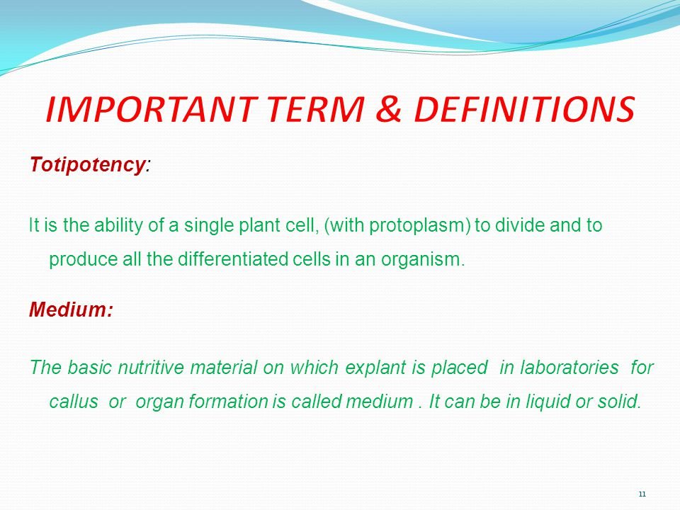 IMPORTANT TERM & DEFINITIONS